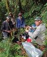 [Translate to English:] Foto af fire modne mænd i en grøn regnskov. Axel Dalberg Poulsen, noget lysere i huden end de tre andre, sidder med et prøveglas.